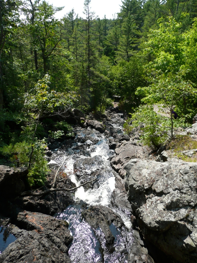 We braved nature to see these falls, Sault Ste. Marie, ON